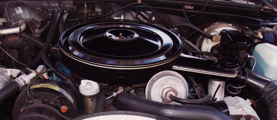1979hurstolds-9.jpg